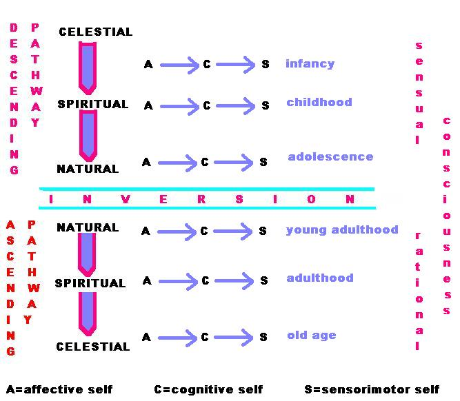 stages of psychosynthesis